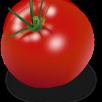 Come Preparare Pomodori Gratinati